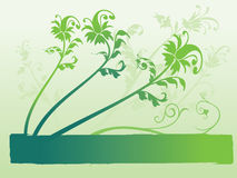 Spring leaf background Royalty Free Stock Photos