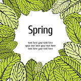 Spring leaf floral card Royalty Free Stock Images