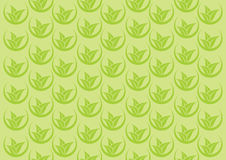 Spring leafs pattern Royalty Free Stock Photos