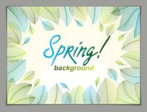Spring leaves horizontal background, nature seasonal template fo Stock Images