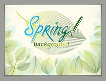 Spring leaves horizontal background, nature seasonal template fo. R design banner, ticket, leaflet, card, poster with green and fresh floral elements. Sale Stock Photography