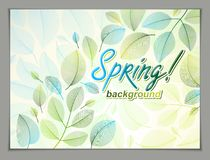 Spring leaves horizontal background, nature seasonal template for design banner, ticket, leaflet, card, poster with green and. Fresh floral elements. Sale stock illustration