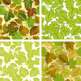 Spring leaves seamless pattern set Royalty Free Stock Image