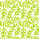 Spring leaves seamless watercolor pattern-model for design of gi Stock Photos
