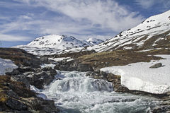 Spring in Leirdalen Stock Photography