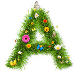 Spring letter A Royalty Free Stock Image