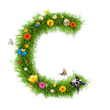 Spring letter C Royalty Free Stock Image