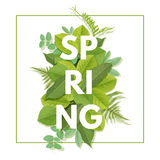 Spring letter with leaves Stock Photo