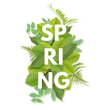Spring letter with leaves Stock Photos