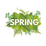 Spring letter with leaves. Spring letter with green leaves. Season sale vector label. Foliage lettering. Floral illustration. Springtime poster. For t-shirt Royalty Free Stock Images