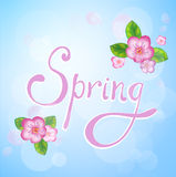Spring lettering. With blooming flowers and leaves. Season background Royalty Free Stock Images