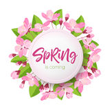 Spring lettering. Blossoming tree brunch with spring flowers on blue background. Vector illustration. Royalty Free Stock Photo