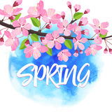 Spring lettering. Blossoming tree brunch with spring flowers. Vector illustration. Stock Photography