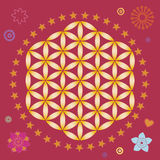 Spring life flower seed power mandala Royalty Free Stock Photos