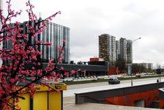 Spring life in Vilnius city on April 2, 2015, Vilnius Stock Photos
