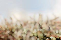 Spring, Light backround blur. Royalty Free Stock Image