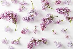 Spring Lilac Flowers on White Wooden Background. Top view stock photography