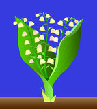 Spring lilies of the valley. Royalty Free Stock Photography