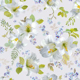 Spring Lily Flowers Background royalty free illustration