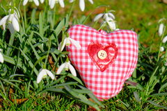 Spring love. Heart on grass surrounded by snowdrops - as a concept for spring, love or environmentalism Royalty Free Stock Photo