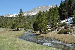 Spring in the Madriu-Perafita-Claror valley. In the upper part of the Vall-de-Madriu-Perafita-Claror there are the high-altitude valleys with the glacial streams Royalty Free Stock Photos