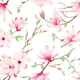 Spring magnolia flowers seamless vector pattern vector illustration