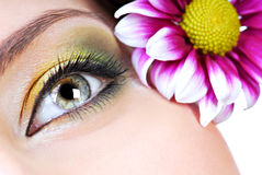 Spring make-up. Close-up of human eye with bright multicolored make-up. Pink flower on background Royalty Free Stock Photography
