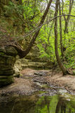 Spring in Matthiessen. Royalty Free Stock Photography