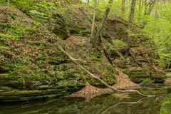 Spring in Matthiessen. Royalty Free Stock Images