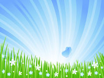 Spring Meadow. Spring green meadow with flowers and butterflies. Vector illustration Stock Images