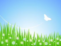 Spring Meadow. Spring green meadow with flowers and butterflies. Vector illustration Royalty Free Stock Image