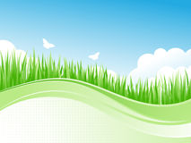 Spring Meadow. Spring green meadow with flowers and butterflies. Vector illustration Stock Photos