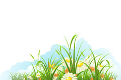Spring meadow banner Royalty Free Stock Image