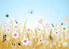Spring meadow beautiful Royalty Free Stock Images