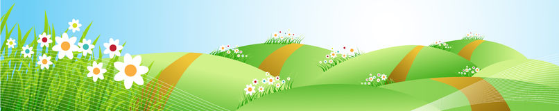 Spring meadow beautiful Royalty Free Stock Photo
