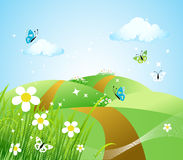 Spring meadow beautiful Royalty Free Stock Image