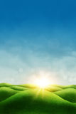 Spring meadow. Blue sky and sun Stock Image