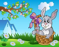 Spring meadow with bunny in basket Royalty Free Stock Photo