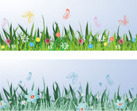 Spring Meadow. With butterflies. Vector illustration Stock Photos