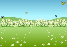 Spring Meadow. Cartoon Background Illustration, Vector Royalty Free Stock Images