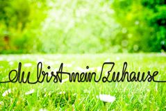 Spring Meadow, Daisy, Calligraphy Zuhause Means Home royalty free stock photography