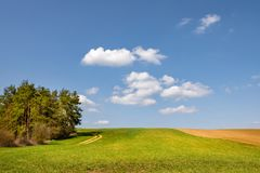 Spring meadow, field and trees under blue sky Stock Images