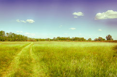 Spring meadow in Hungary. Clear blue sky. Wheel tracks. Hungarian countryside. Vintage photo. A moment of stillness Royalty Free Stock Photography