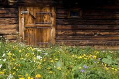 Spring meadow and hut Royalty Free Stock Images