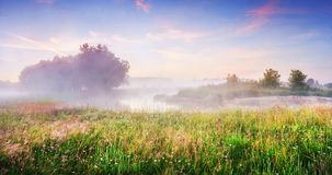 Spring meadow landscape. Natural scene of nature in the morning. Scenic river with mist and morning summer sky Royalty Free Stock Image