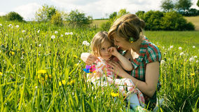 Spring Meadow #4 Royalty Free Stock Photos