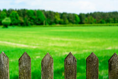 Spring meadow with old wooden fence Stock Photography