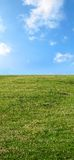 Spring meadow and sunny clear sky Stock Photo