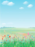 Spring meadow, vector. Background is my creative drawing and you can use it for your design, made in vector, Adobe Illustrator 8 EPS file Royalty Free Stock Photo