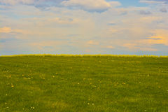 Spring meadow yellow rapes and sun set sky Royalty Free Stock Image